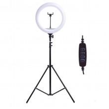 Кольцевая светодиодная лампа 30.5см с держателем для телефона + штатив 200см Ring Fill Light